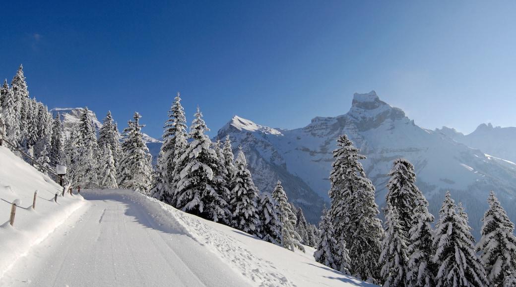 Engelberg-Titlis Ski Resort featuring snow
