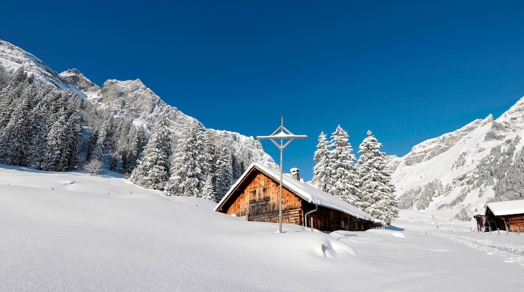 Engelberg-Titlis Ski Resort showing snow and a house