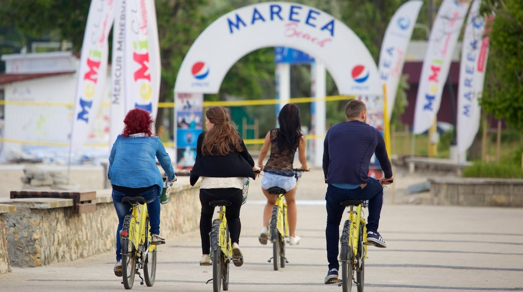 Mamaia Beach which includes cycling