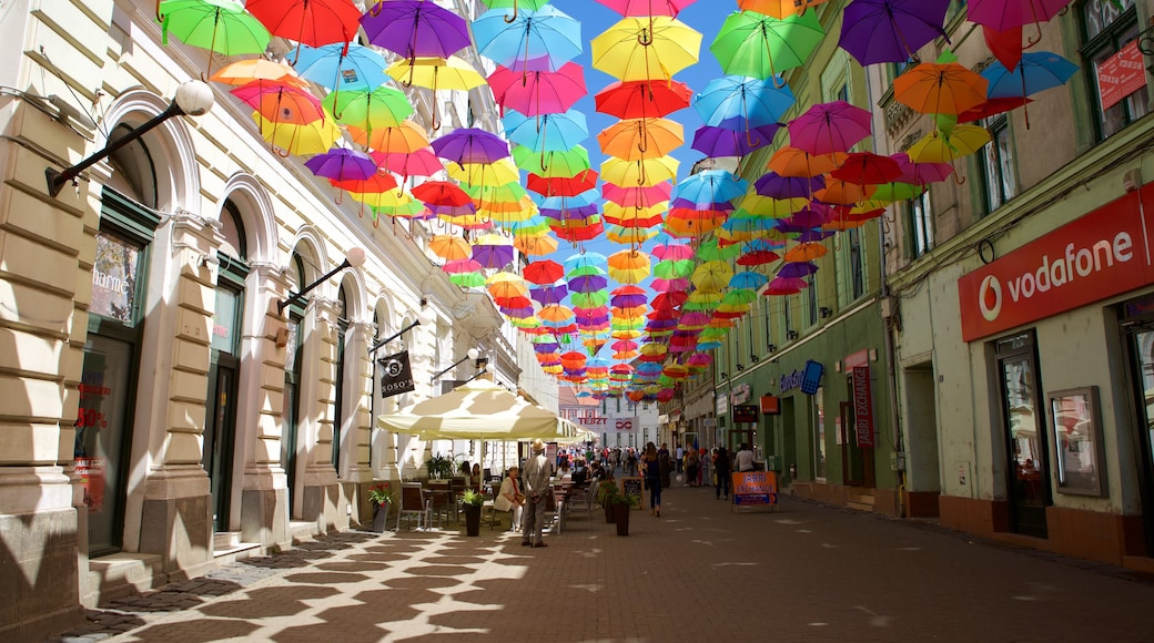 Timisoara which includes outdoor art