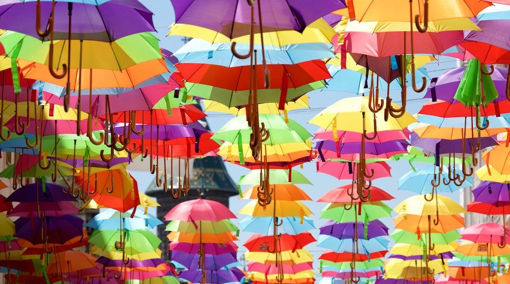 Timisoara featuring outdoor art