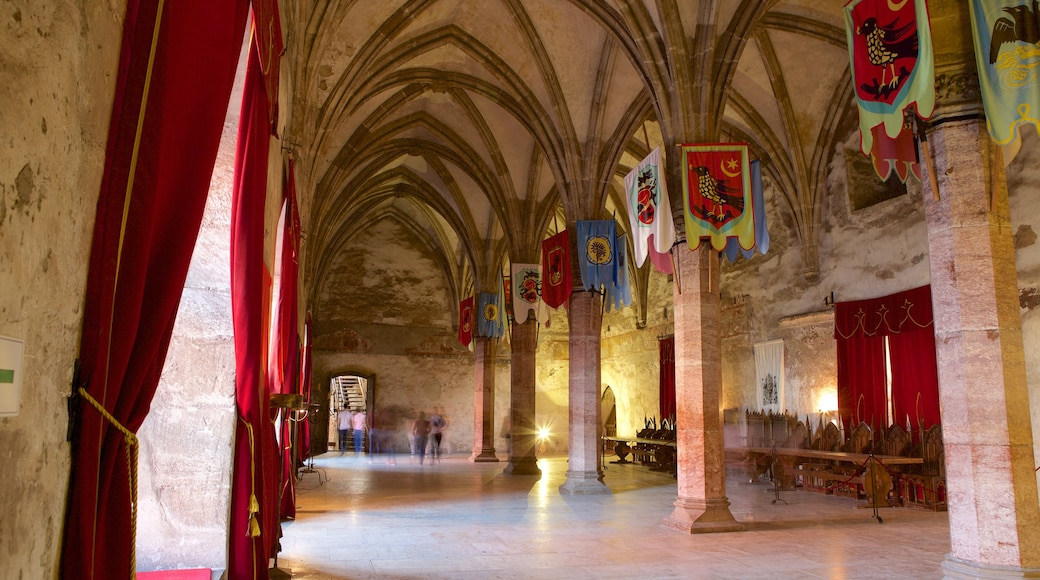 Hunedoara Castle featuring interior views