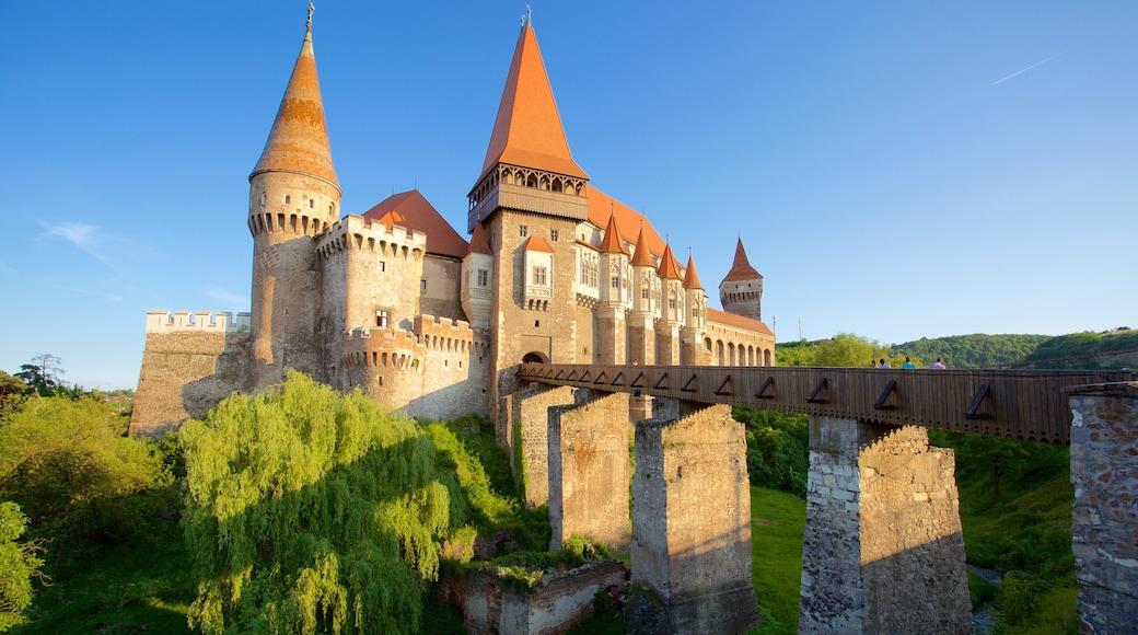 Hunedoara Castle showing château or palace and a bridge