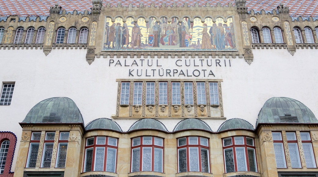 Tirgu Mures Cultural Palace showing signage