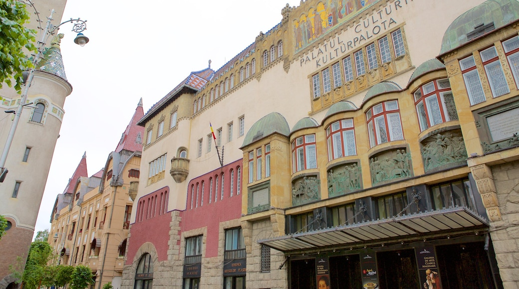 Tirgu Mures Cultural Palace featuring heritage architecture