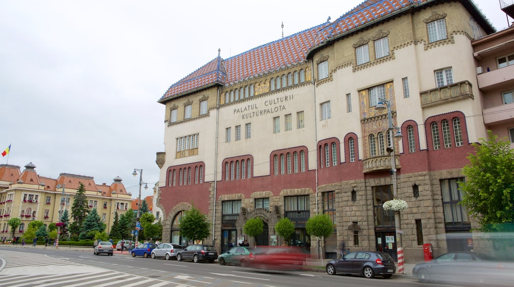Tirgu Mures Cultural Palace showing heritage architecture