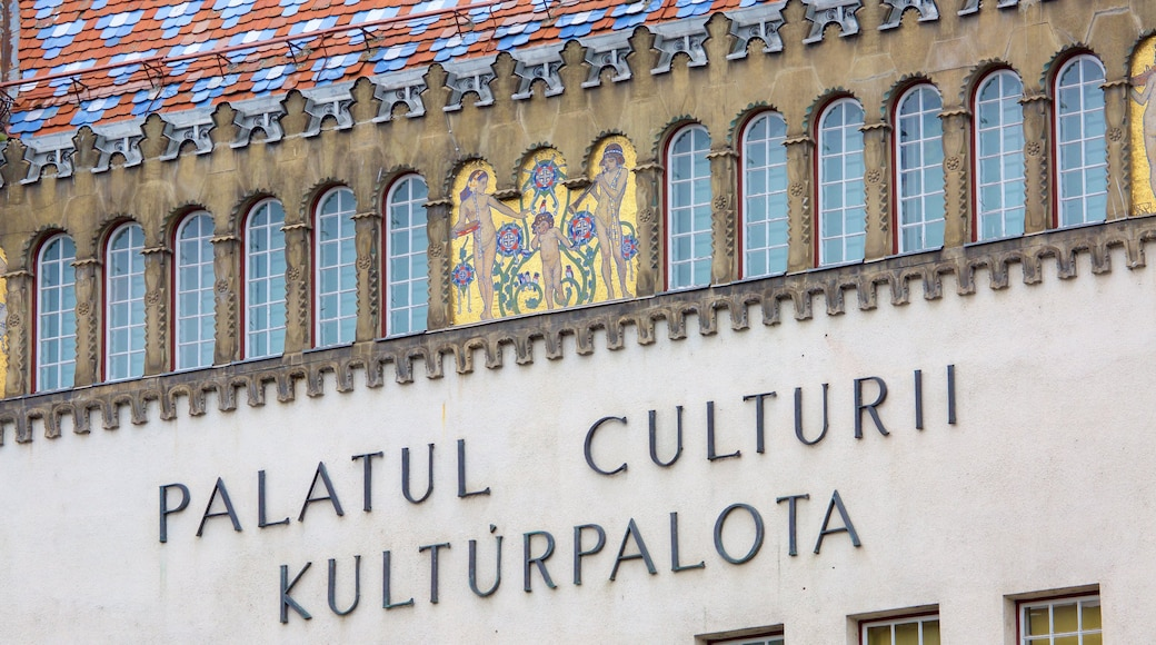 Tirgu Mures Cultural Palace which includes signage