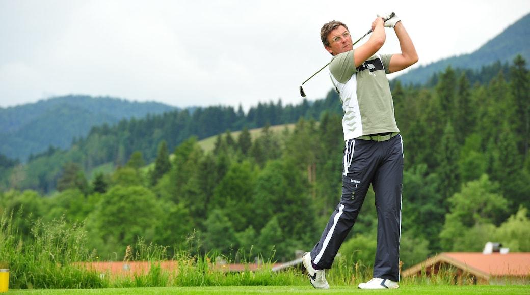 Ellmau welches beinhaltet Golf sowie einzelner Mann