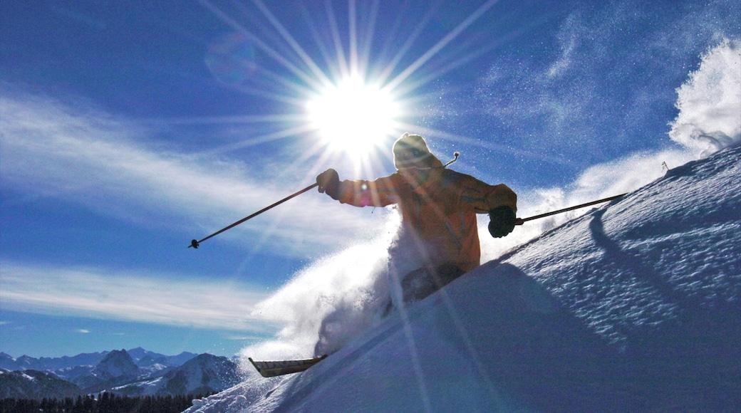 Scheffau am Wilden Kaiser featuring snow and snow skiing
