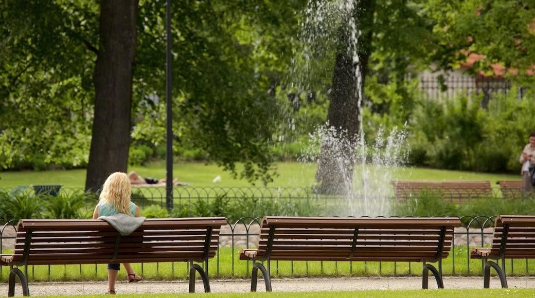 Vilnius caratteristiche di fontana