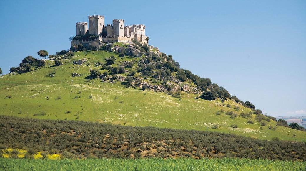 Córdoba ofreciendo montañas y un castillo