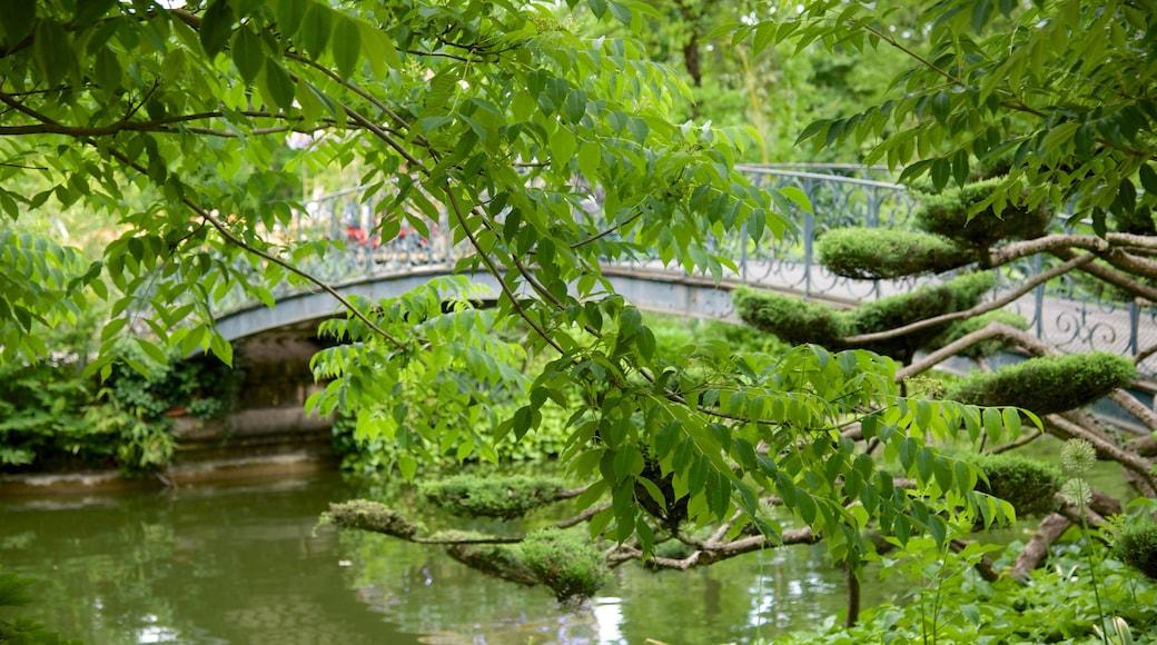 Giardino pubblico mostrando ponte e giardino