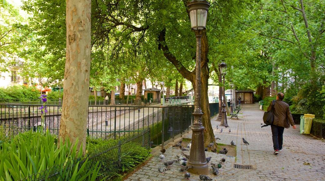 10° Arrondissement che include volatili e parco