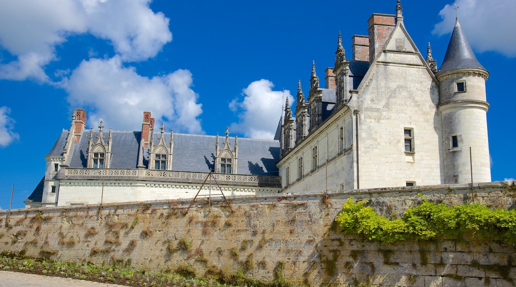 Chateau d\'Amboise showing château or palace and heritage elements