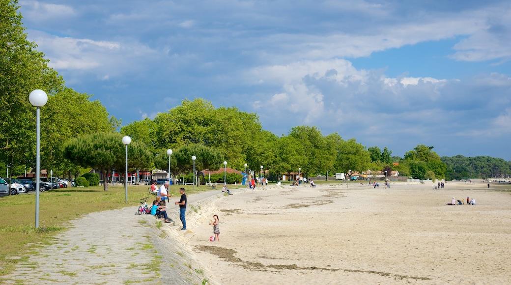 Bordeaux mettant en vedette plage de sable