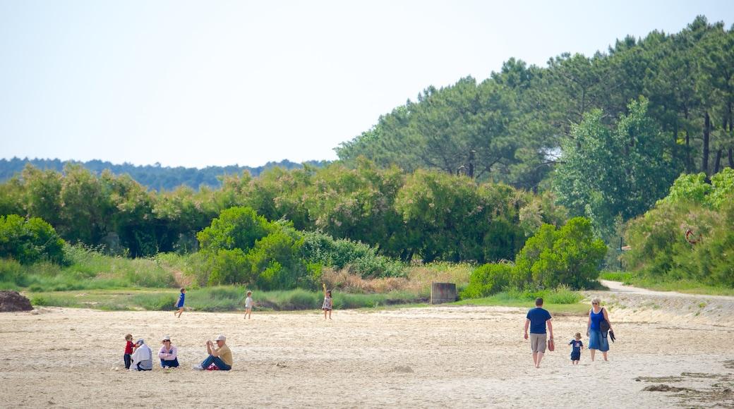 Bordeaux mettant en vedette plage