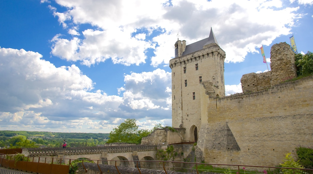 Indre-et-Loire which includes heritage elements, château or palace and heritage architecture