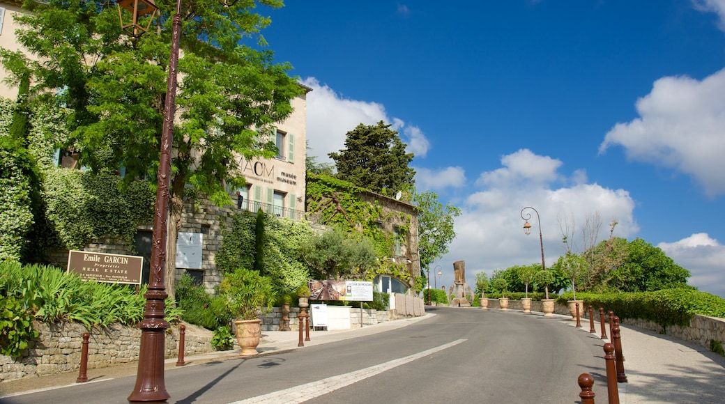 Mougins showing a small town or village