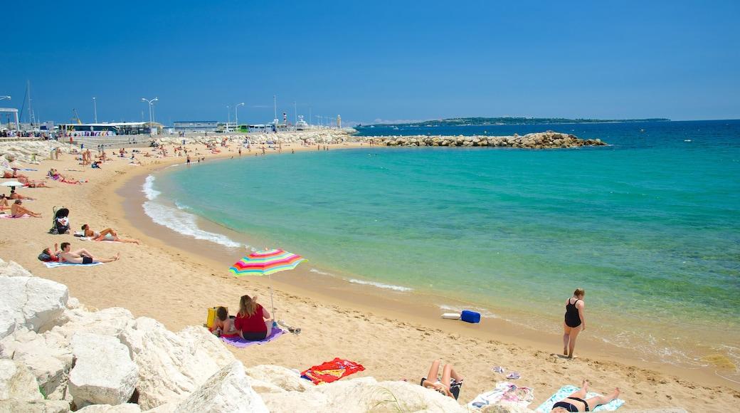 Midi Beach showing a sandy beach