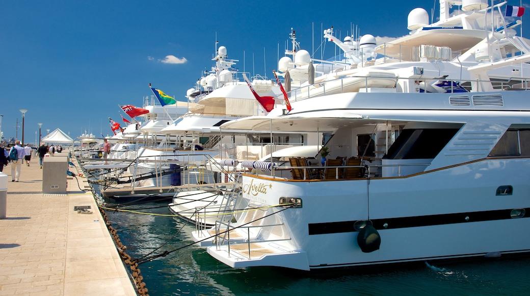 Hafen von Cannes welches beinhaltet Bucht oder Hafen und Marina