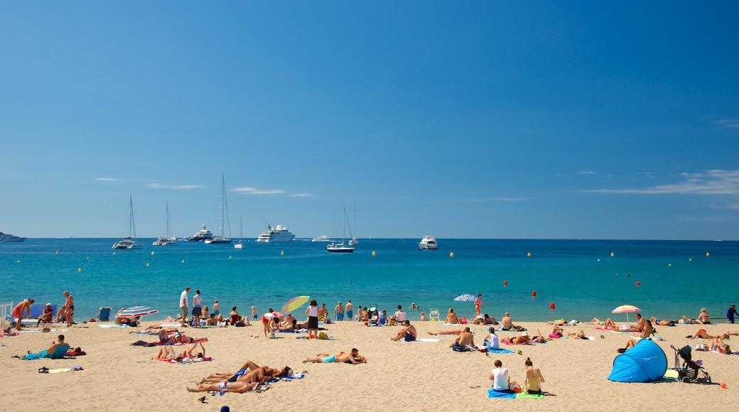 Cannes che include baia e porto e spiaggia