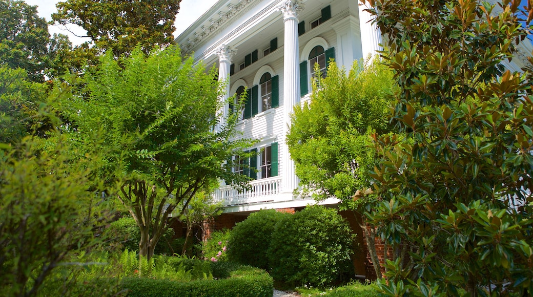 Bellamy Mansion Museum showing heritage architecture and a house