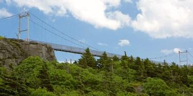 Grandfather Mountain showing a bridge