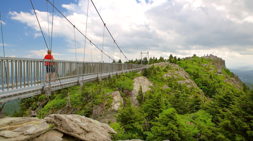 Grandfather Mountain showing a suspension bridge or treetop walkway as well as an individual male