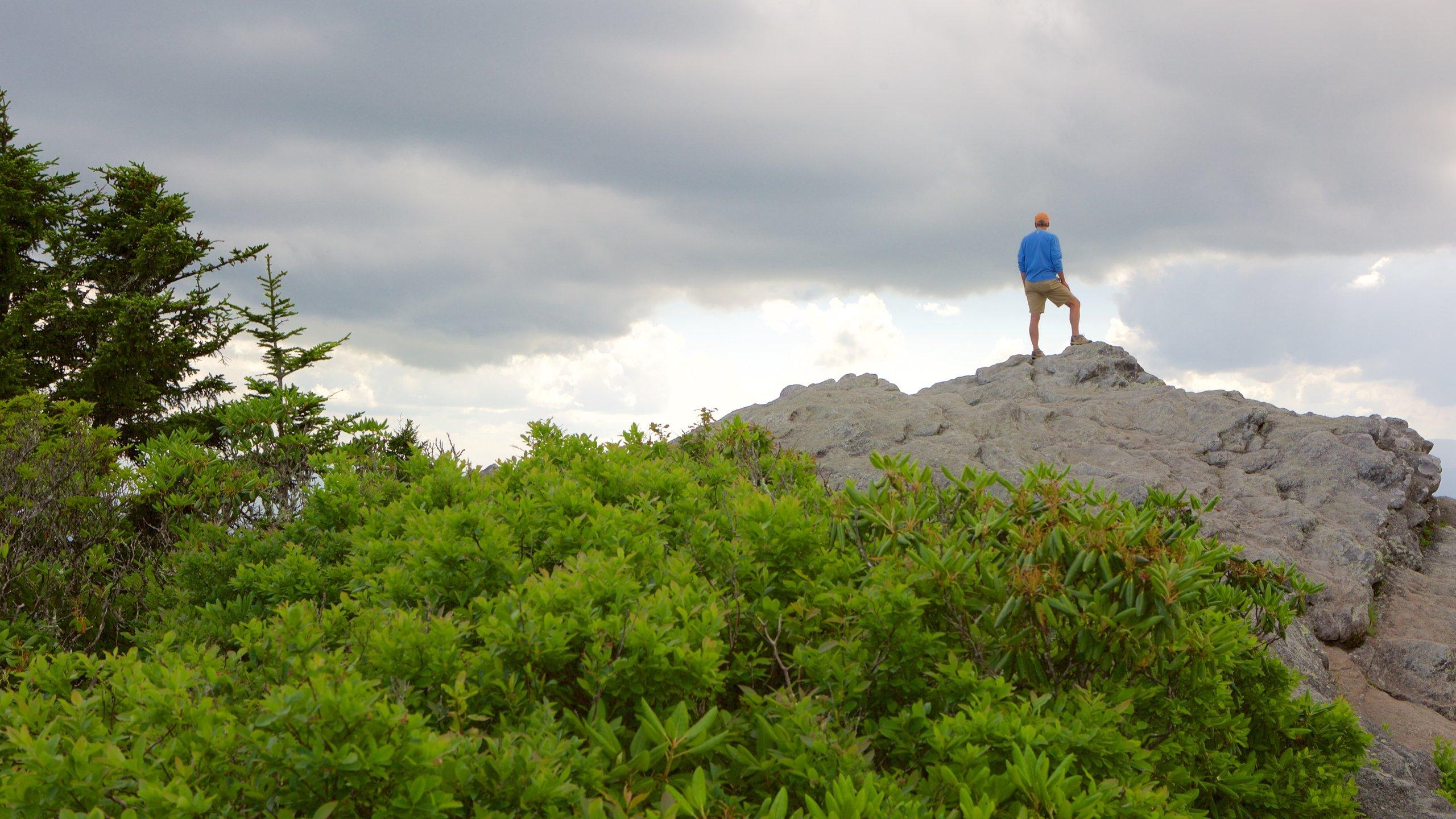 Grandfather Mountain, Linville, North Carolina, United States of America