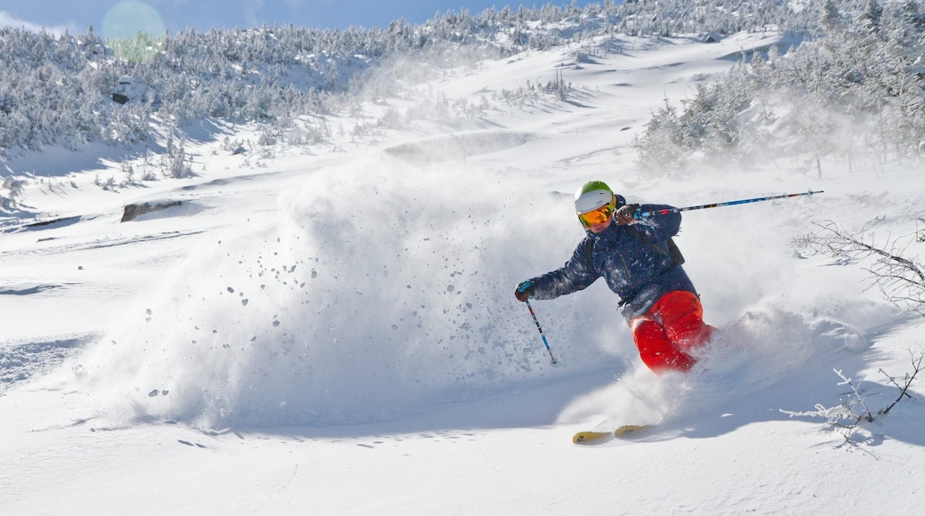 Whiteface Mountain which includes snow skiing, mountains and snow