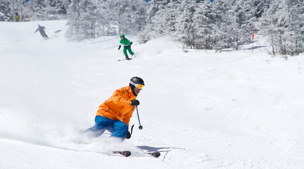 Whiteface Mountain showing snow skiing and snow as well as an individual male