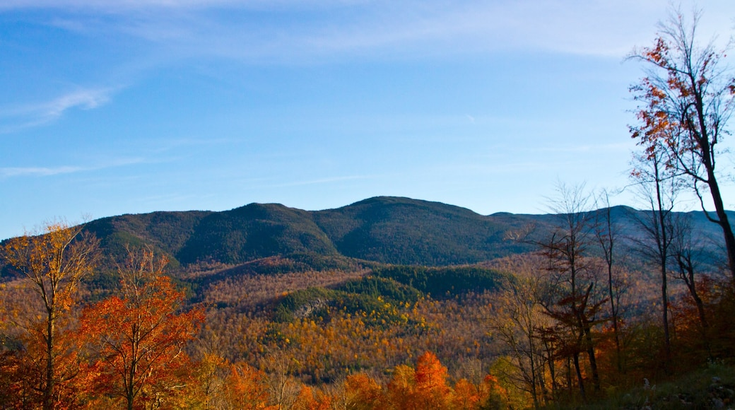 Whiteface Mountain featuring tranquil scenes