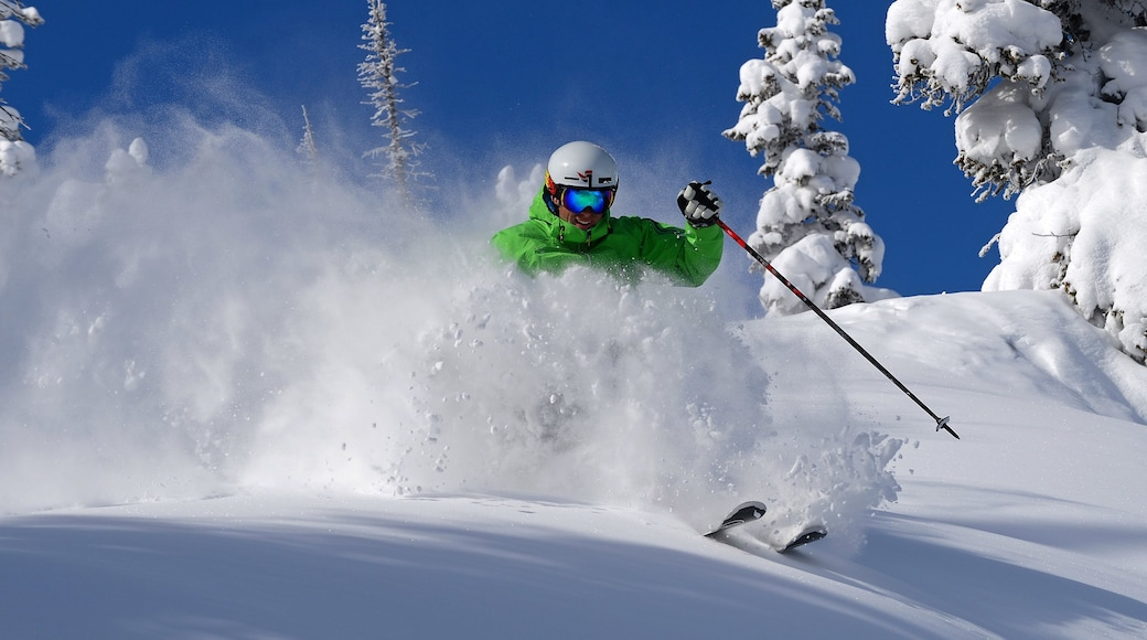 Steamboat Ski Resort featuring snow and snow skiing as well as an individual male