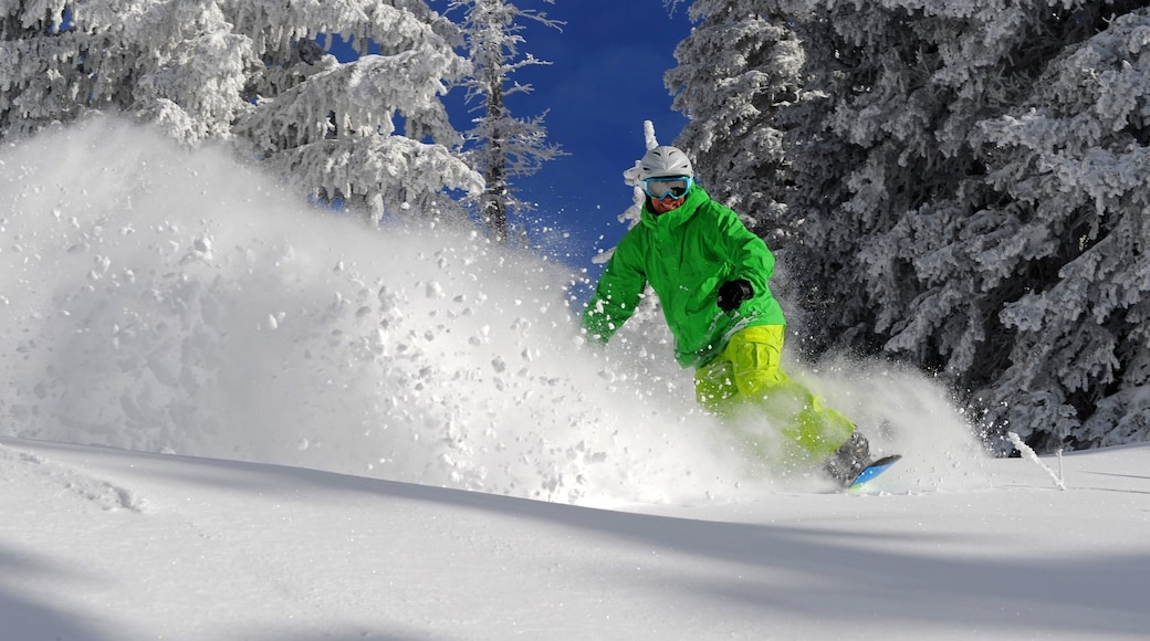 Steamboat Ski Resort which includes snow and snow boarding as well as an individual male