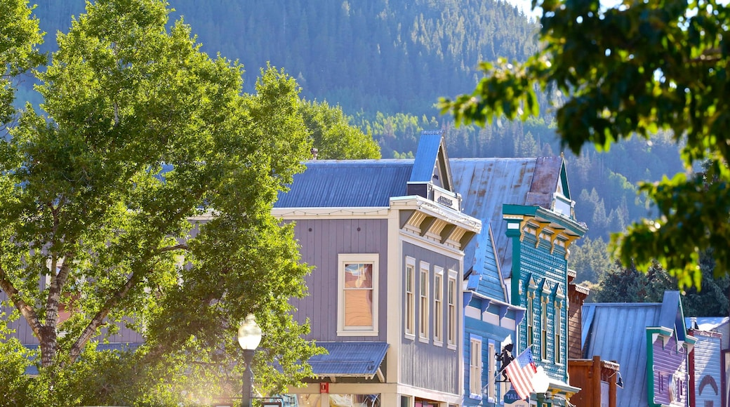Crested Butte Mountain Resort featuring a small town or village