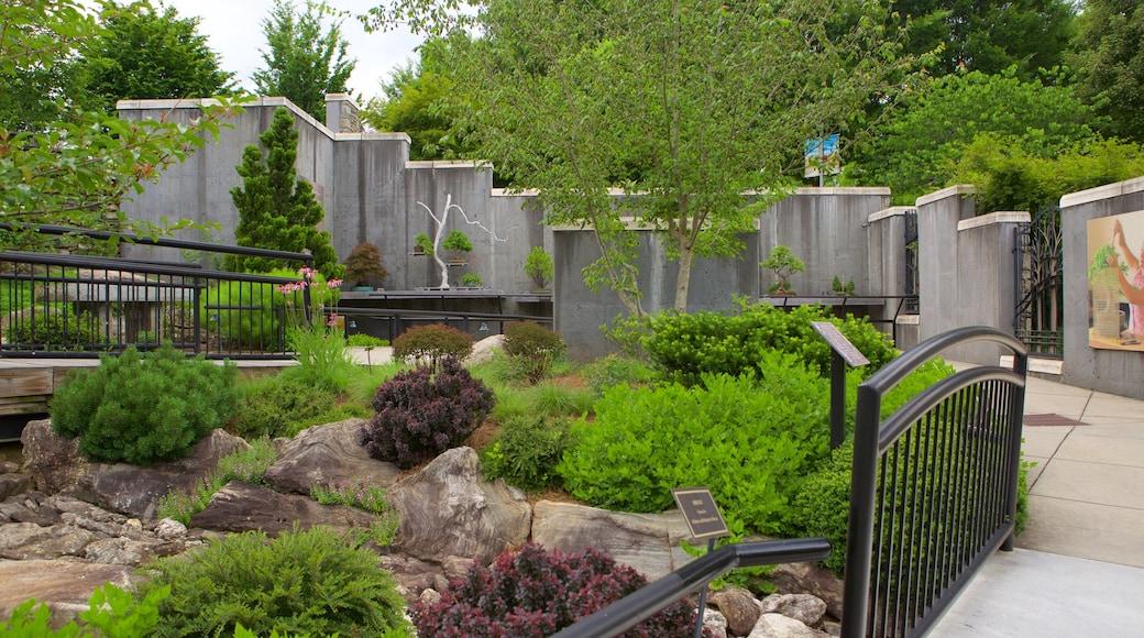 North Carolina Arboretum which includes a garden
