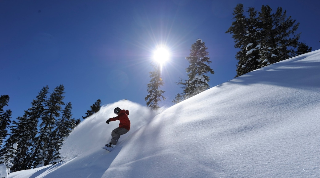 Northstar California Resort which includes snow and snowboarding as well as an individual male