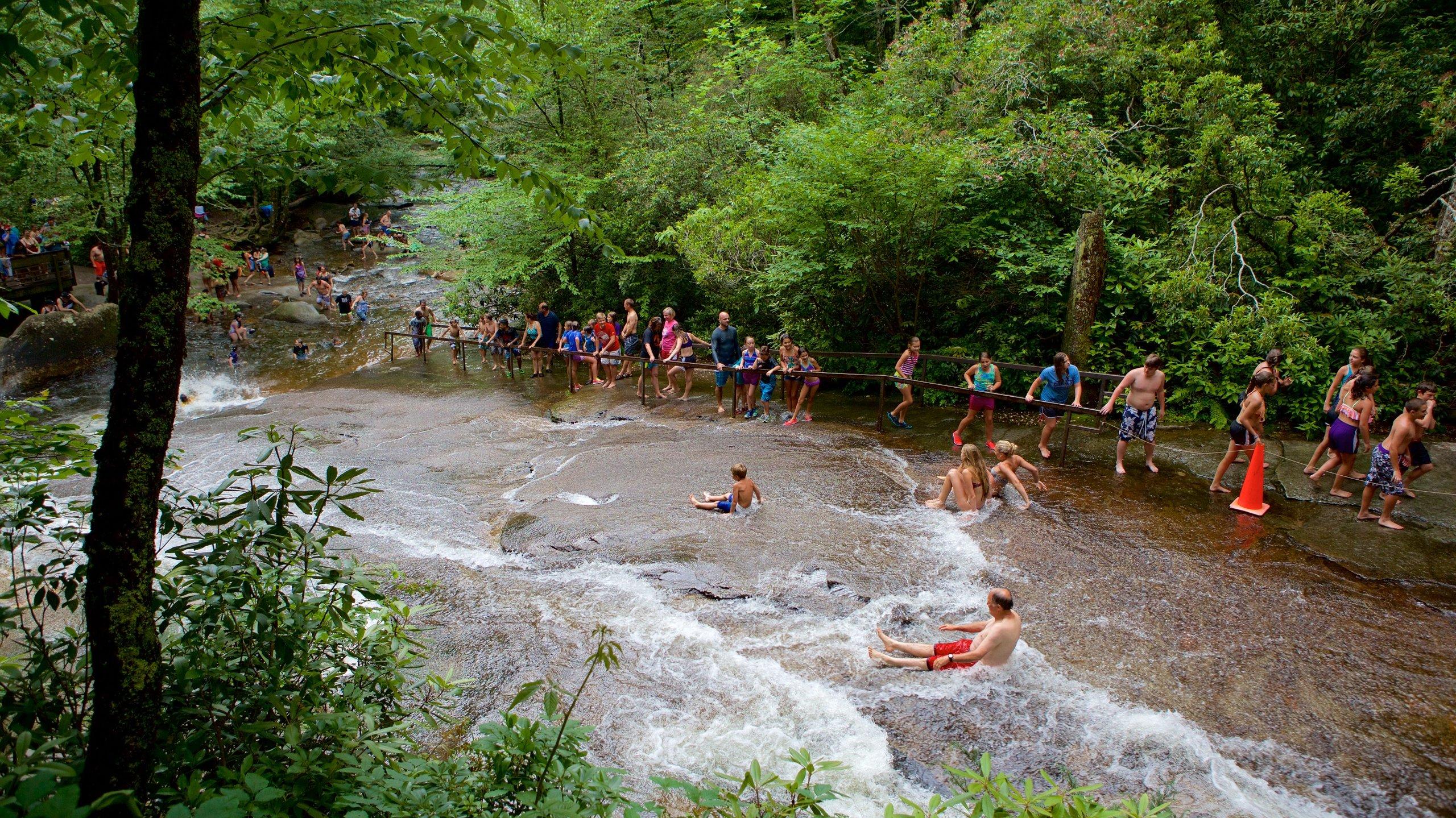 Reems Creek, North Carolina, United States of America