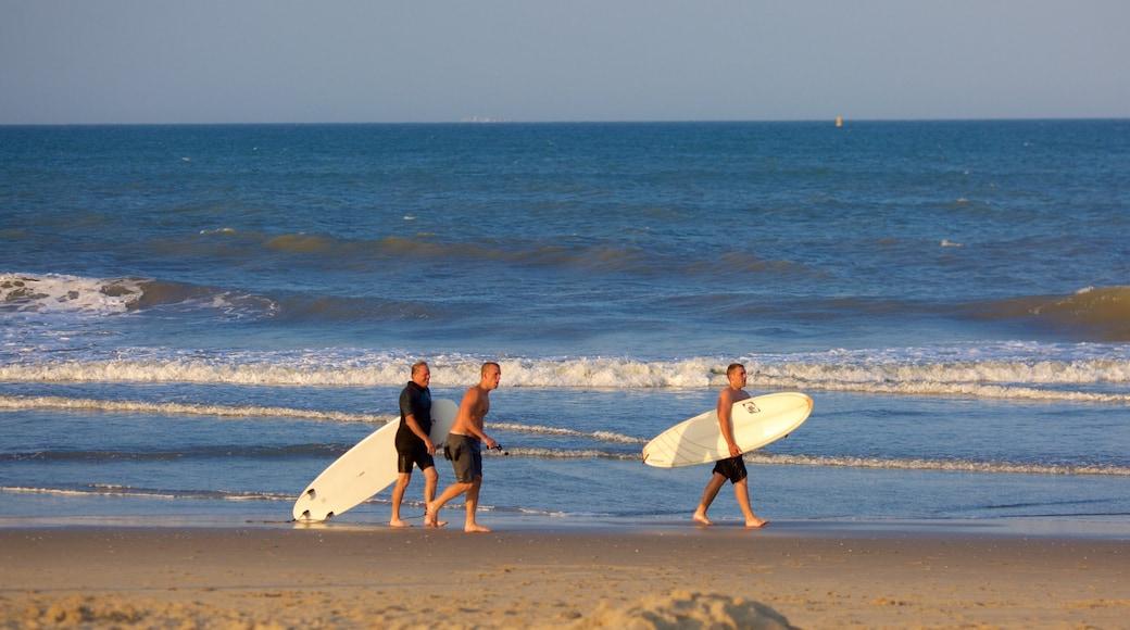 Sandbridge Beach montrant surf et plage de sable aussi bien que petit groupe de personnes