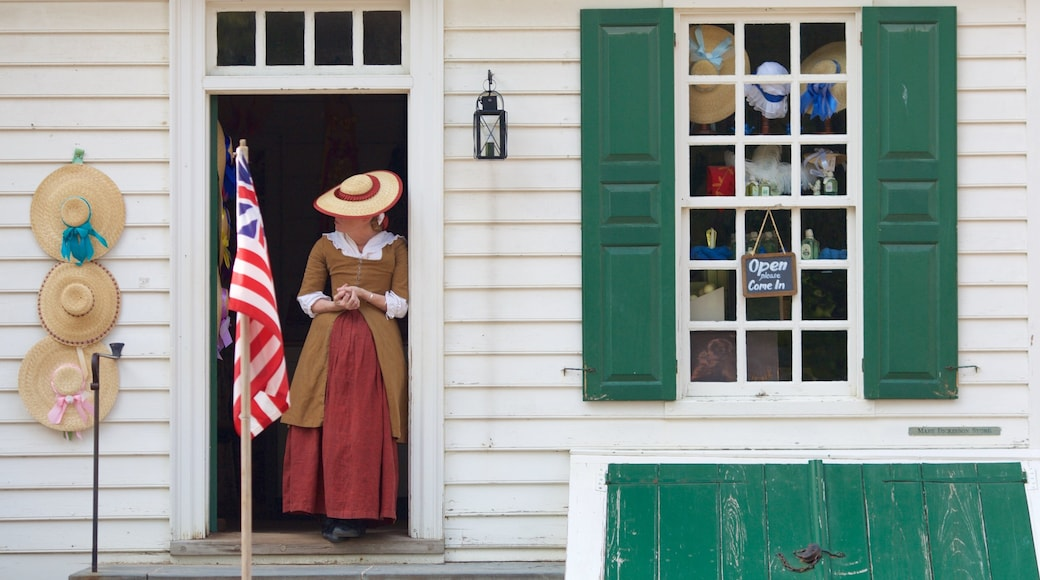 Colonial Williamsburg Visitor Center which includes heritage elements as well as an individual femail