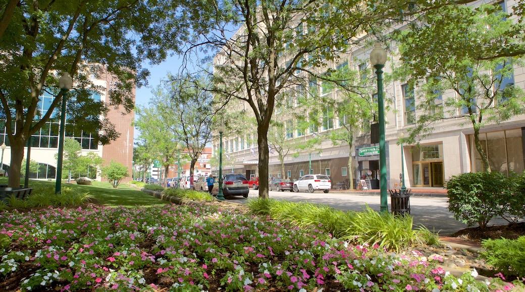查理斯頓 呈现出 街道景色 和 花園