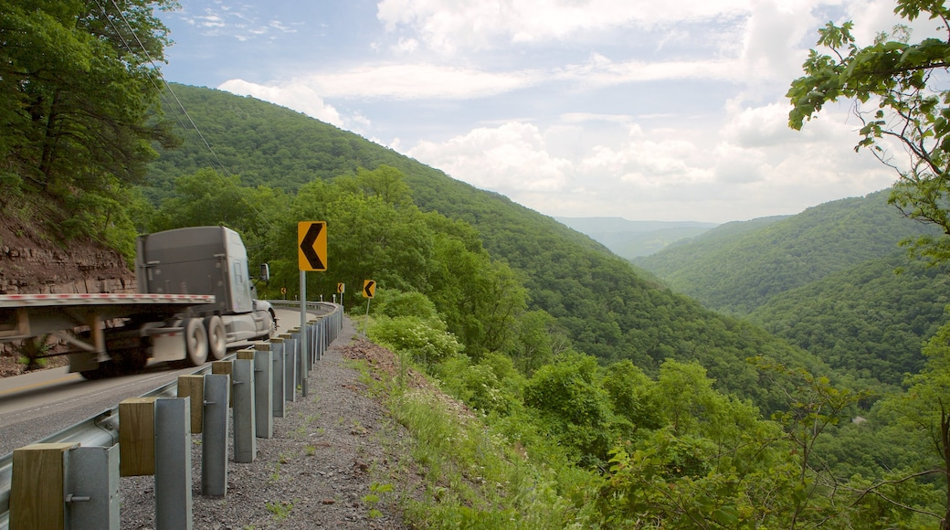 Canaan Valley which includes tranquil scenes and mountains