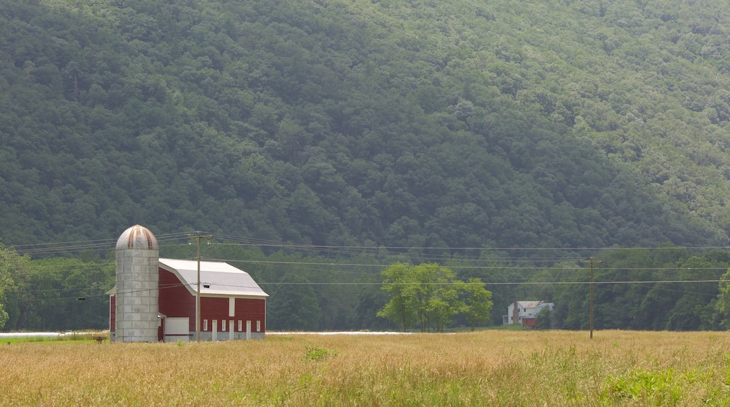 Canaan Valley which includes tranquil scenes, farmland and a house