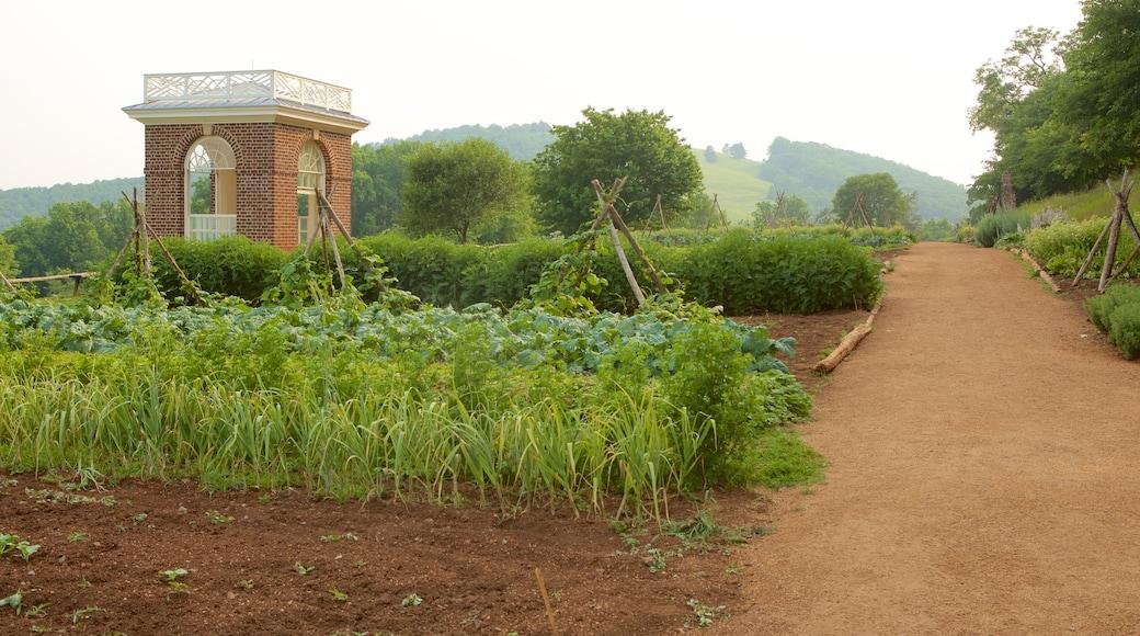 Monticello which includes farmland and tranquil scenes