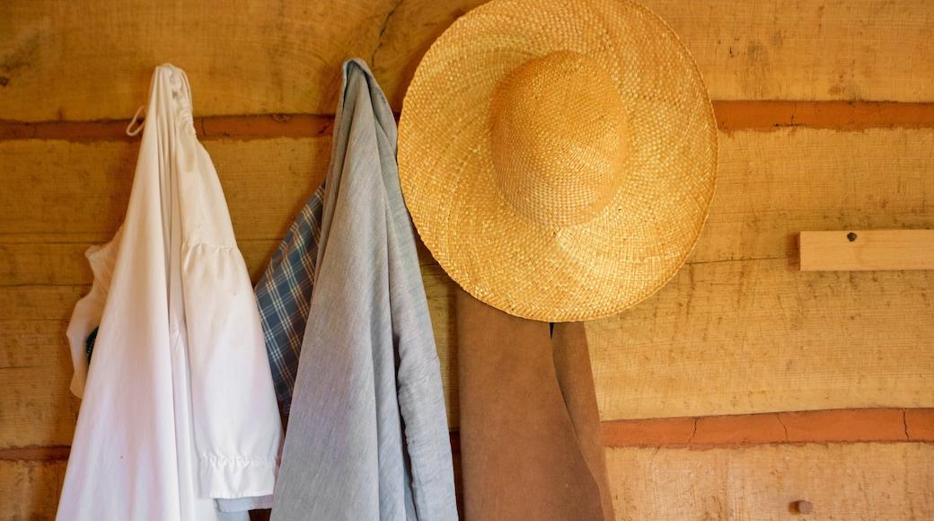 Monticello showing interior views, fashion and farmland