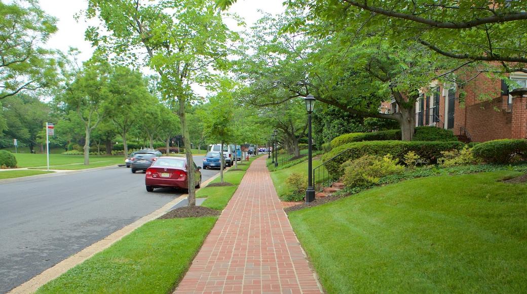 Fairfax showing a garden and street scenes