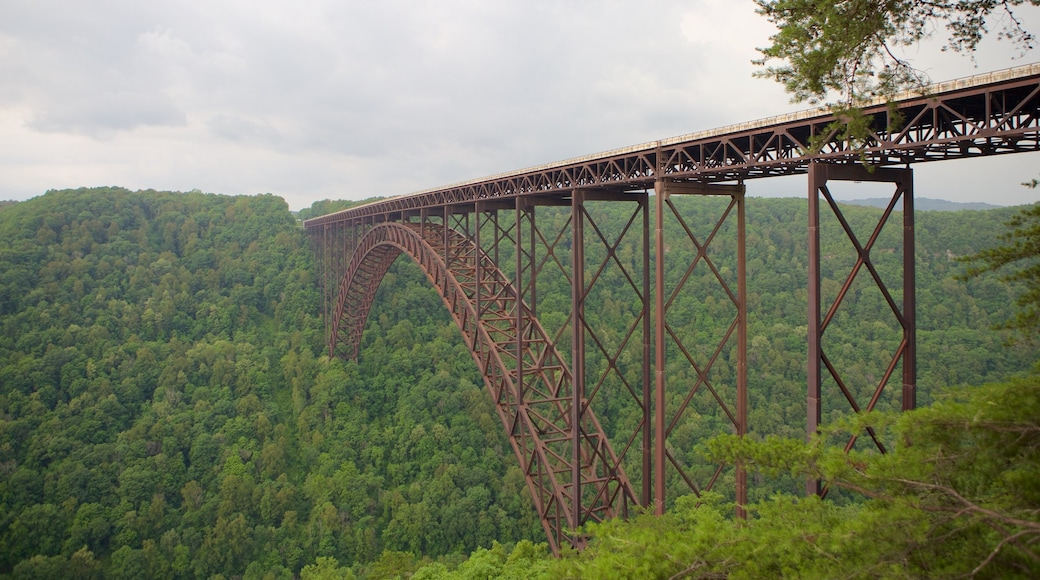 New River Gorge Bridge showing tranquil scenes, a bridge and a gorge or canyon