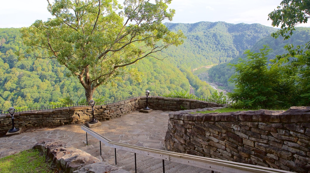 Hawks Nest State Park showing views, mountains and tranquil scenes