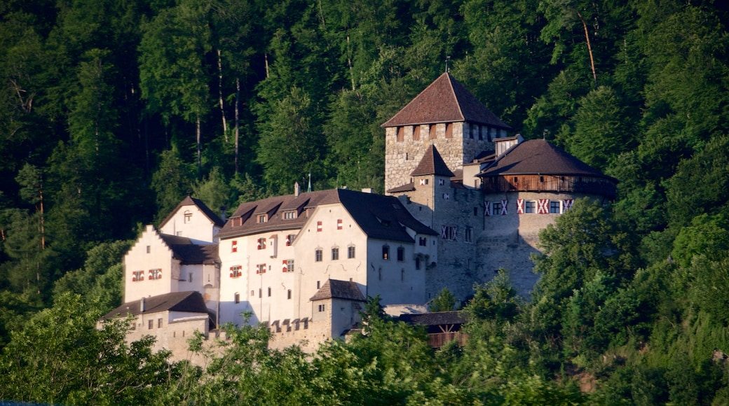 Vaduz Castle showing heritage architecture, chateau or palace and forest scenes