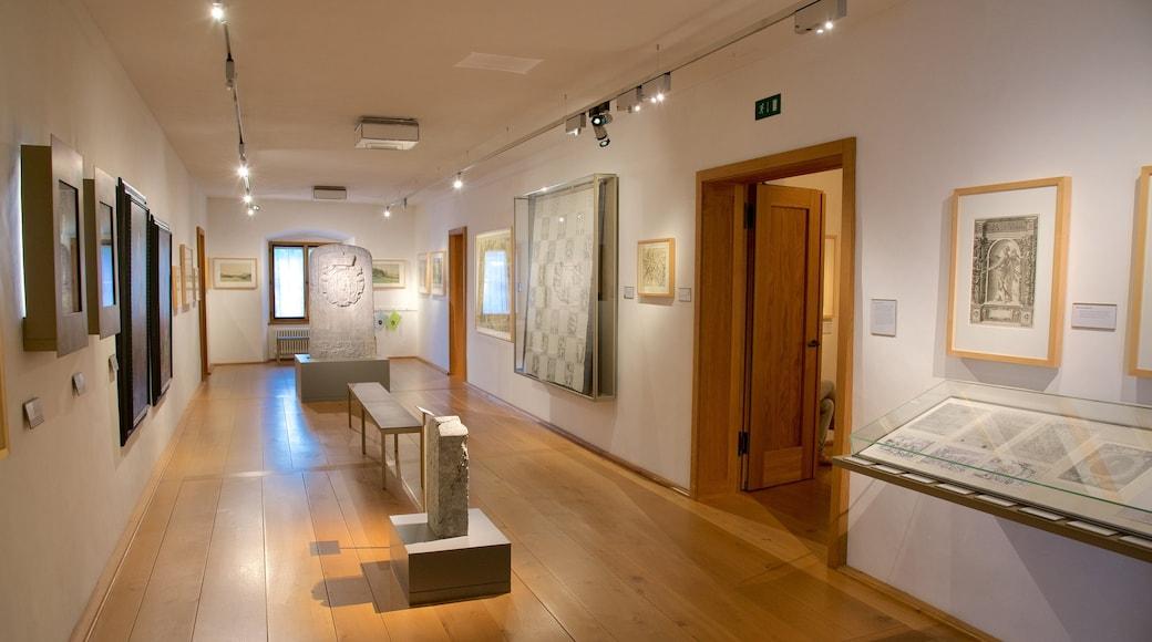 Liechtensteinin kansallismuseo featuring sisäkuvat